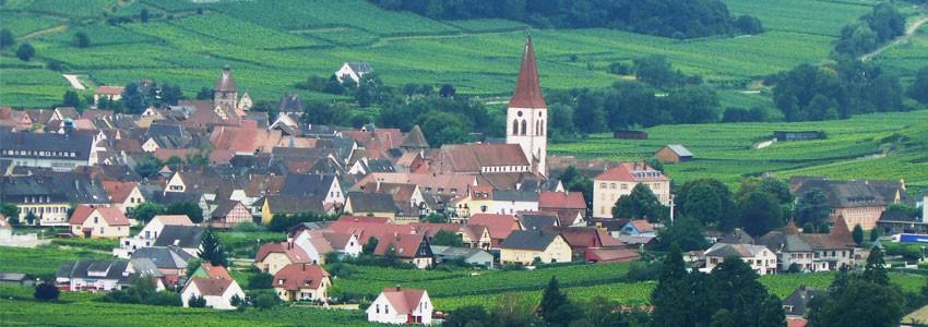 Alsatian wines from Ammerschwihr • Winozof